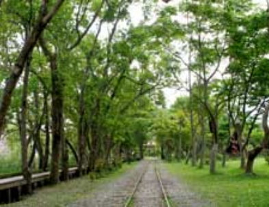 chartered tour taiwan-Luodong Forestry Culture Garden.jpg